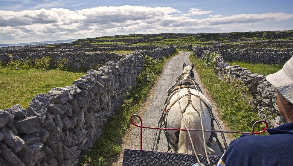 Doolin - Do - Aran - Horse & Cart